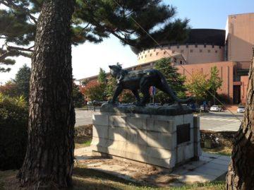 【発酵ソムリエ】韓国へ発酵食品を求めて、その5の画像