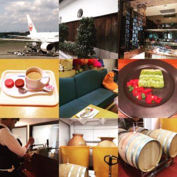 【発酵ソムリエ】まっちゃまちでフィールドワーク。チョコ&ワインの画像
