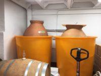 #チョコレート発酵 #アルコール発酵 #まっちゃまち #ワイン