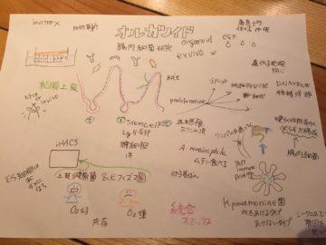 【発酵ソムリエ】乳酸菌学会に行ってきました。の画像